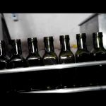 מילוי בקבוקי שמן שמן חרירים ליניארי 6 מלא